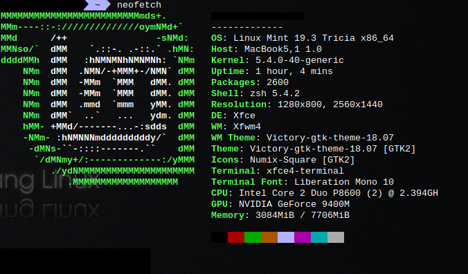 Neofetch - Linux Mint